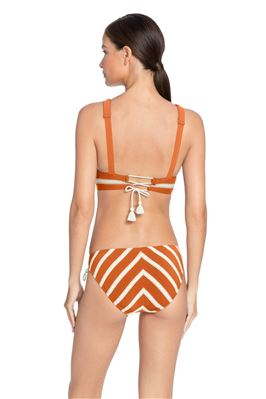 Fixed Banded Triangle Bikini Top